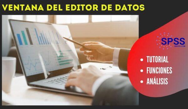 ventana del editor de datos